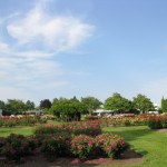 flimley-park