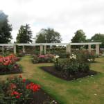 Murray Linton Rose Garden – Rotorua