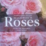 Win – Macoboys Roses